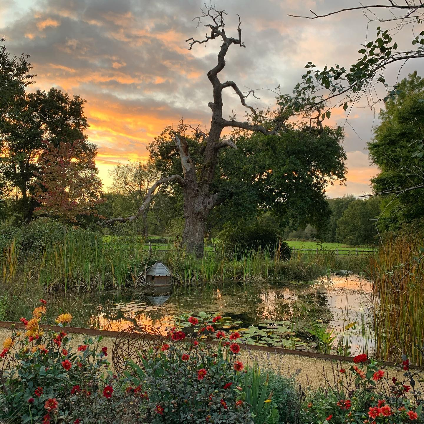 Autumn evening by the pond