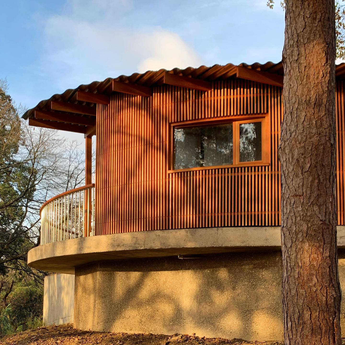 Cantilevered Pool house by the brilliant @surmanweston on our Surrey project ... The warm timber illuminated by the low sun