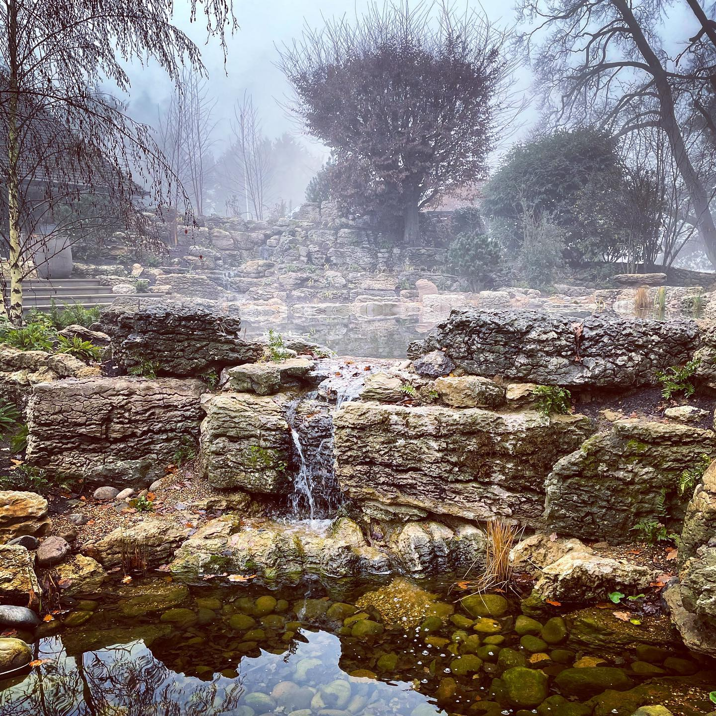 Beautiful atmospheric misty morning at our Surrey project... phase two is well underway with front garden and woodland garden taking shape! @belderboslandscapes @waterartisans @surmanweston